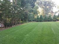 Expanse of lawn that will become a residential basketball court in shades of blue in Lexington, MA.