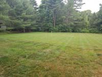Grassy area that will become a commercial royal blue and titanium basketball court with golf seahorse logo at Bay Club in Mattapoisett, MA.
