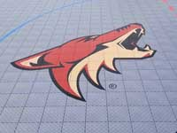 Arizona Coyotes NFL team logo on inline hockey rink.