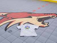 Arizona Coyotes logo on freshly installed inline hockey rink at Grand Canyon University in Phoenix, AZ. Also showing off our Basketball Courts MA shirt.